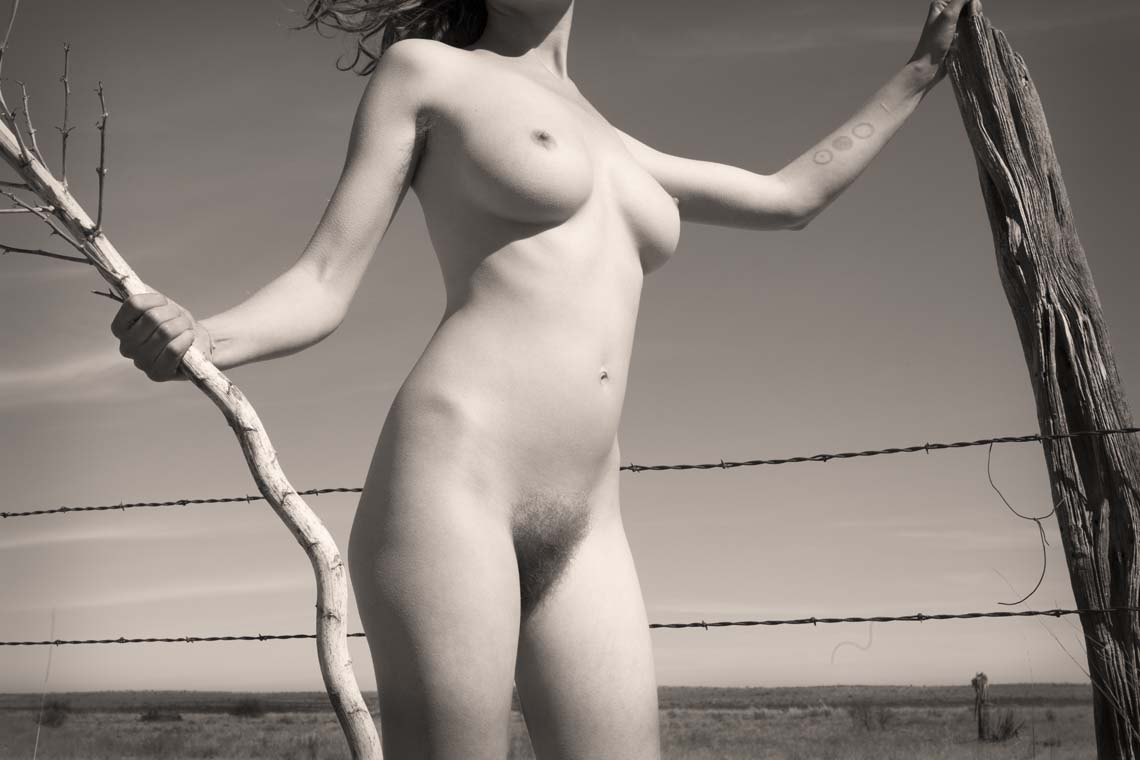 Nude with Barbed Wire Fence