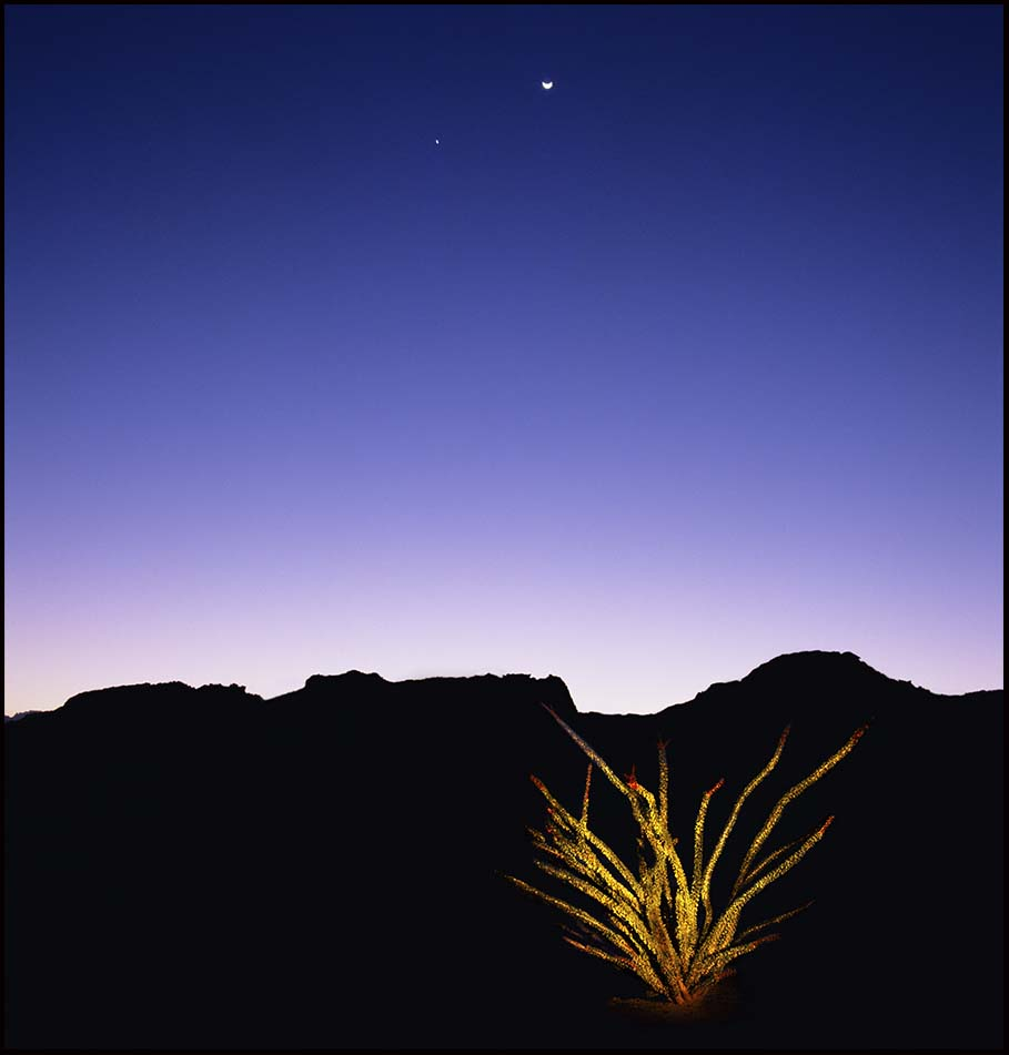 © James-H-Evans-Ocotillo and Planets
