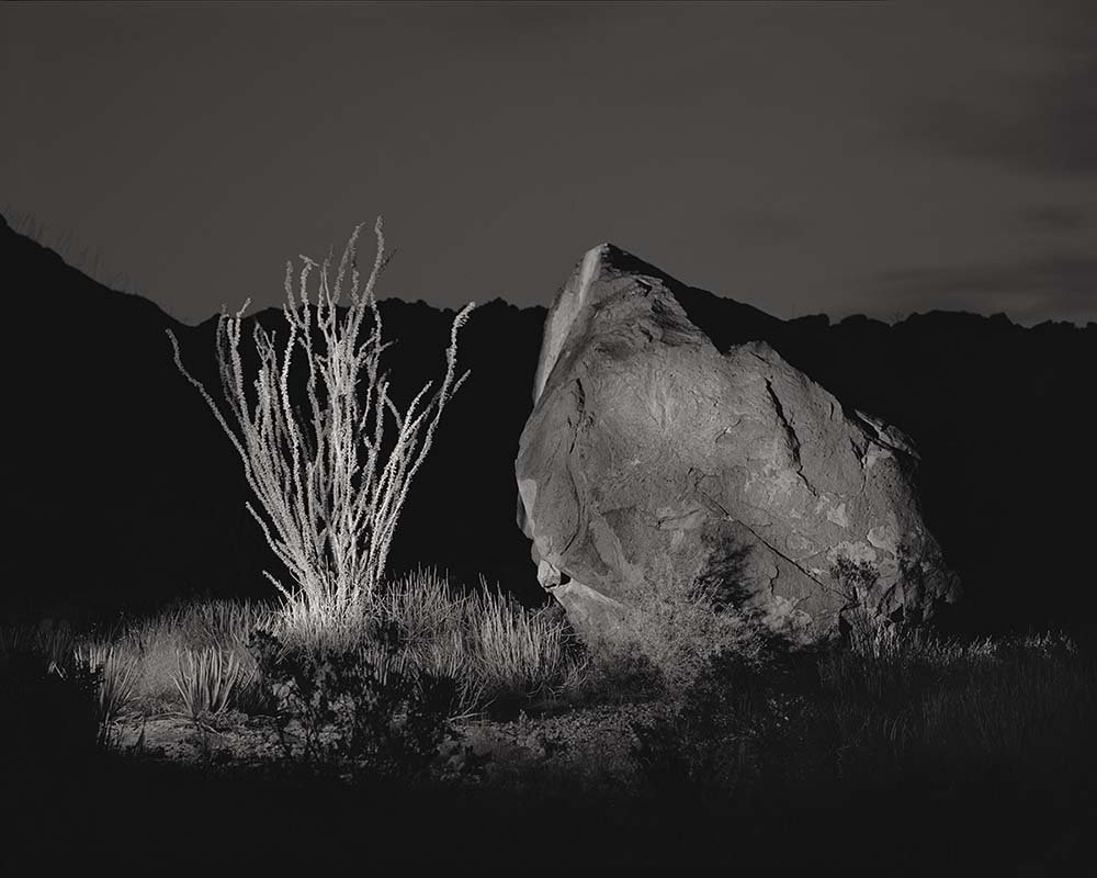 © James-H-Evans-Ocotillo. and Rock