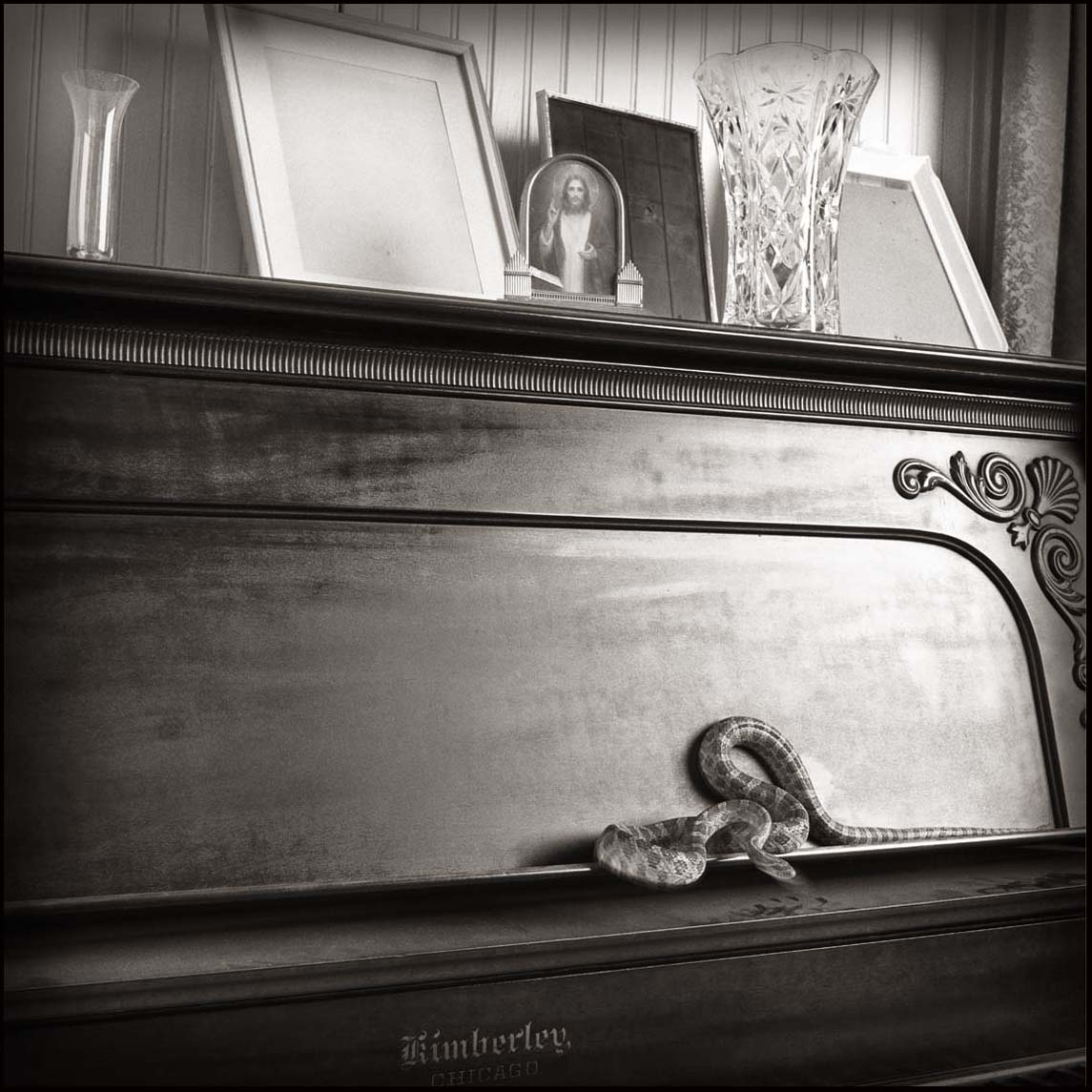 Snake and Piano